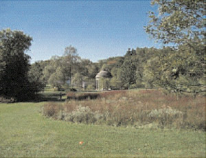A gazebo located within a picturesque wooded park