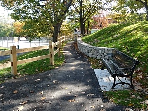 A park bench along a walking trail