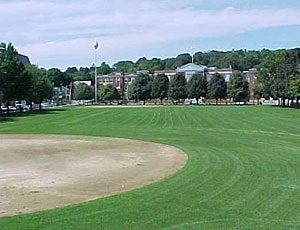 A softball field surrounded by trees